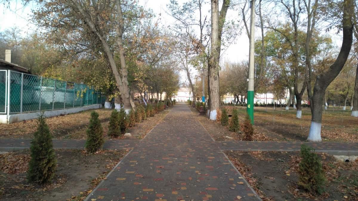 osen-v-parku